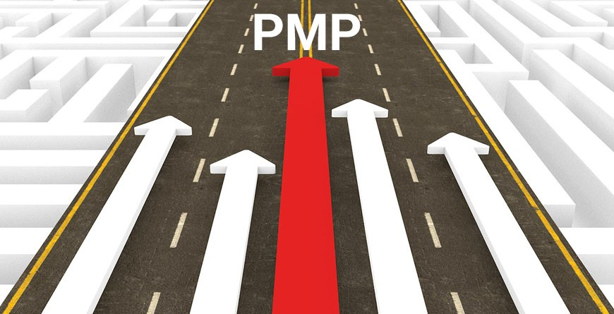 Who Can Apply For Pmp Certification Mindsmapped